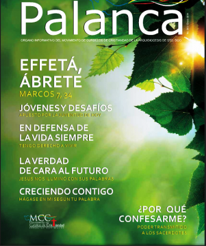 Palanca-Enero-2014.png