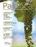 Revista Palanca Junio 2016