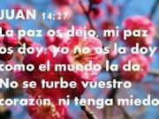 Lecturas de hoy Martes de la 5ª semana de Pascua