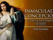 Lecturas de hoy Solemnidad de la Inmaculada Concepción de la Virgen María.